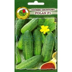 Огурец Полан 5г. (семена)