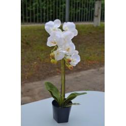 Цветок искусственный Орхидея в горшке ветка двойная 58см кремовая CV07589