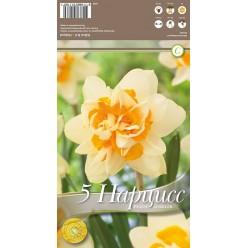 Нарцисс Peach Cobbler 5 шт/уп р.14/16, каперс 108436