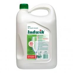 "Средство для мытья посуды ""Ludwik"", мята, 5 кг"