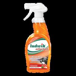 """Средство для мытья замасленных поверхностей """"Ludwik"""" active foam Exotic Fruits, 750 мл"""