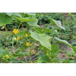 Сетка для вьющихся растений 0,9х1,8 9324