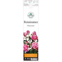 "Роза Ренессанс парк. гранд. (саж. ЗКС) ""Monteаgro"" коробка 6.17"
