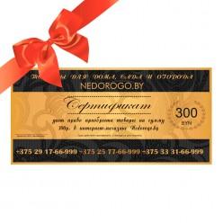 Подарочный сертификат на 300 рублей