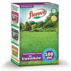Удобрение Флоровит для газонов длительного действия 100 дней  1кг, коробка